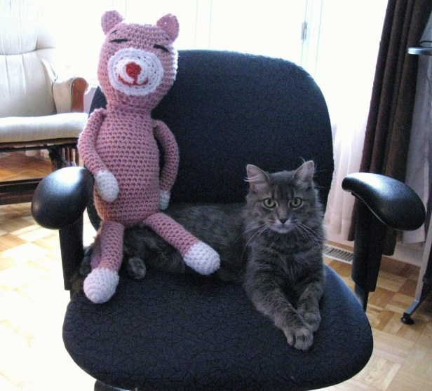Teddy le chat avec Lily