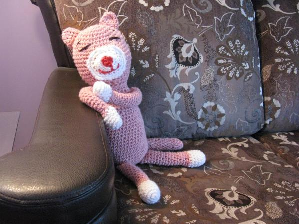 Teddy le chat