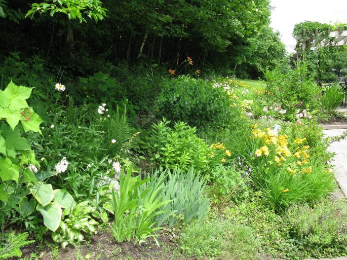 Jardins 2_2014