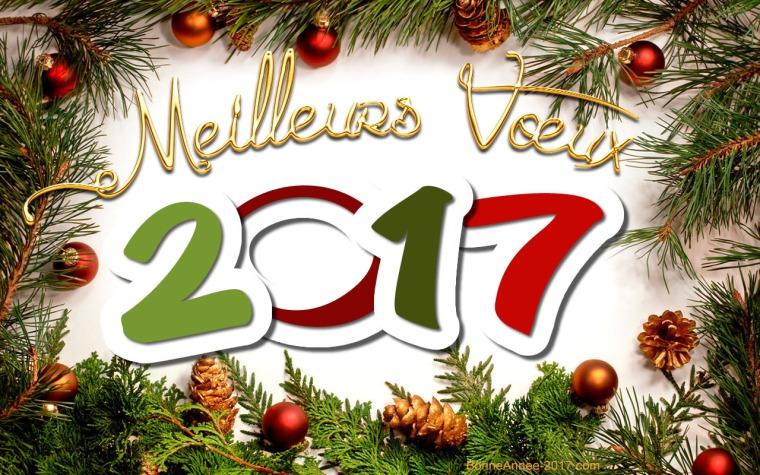meilleurs-voeux-2017